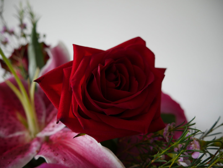 7 Single Ways to Celebrate Valentine's Day
